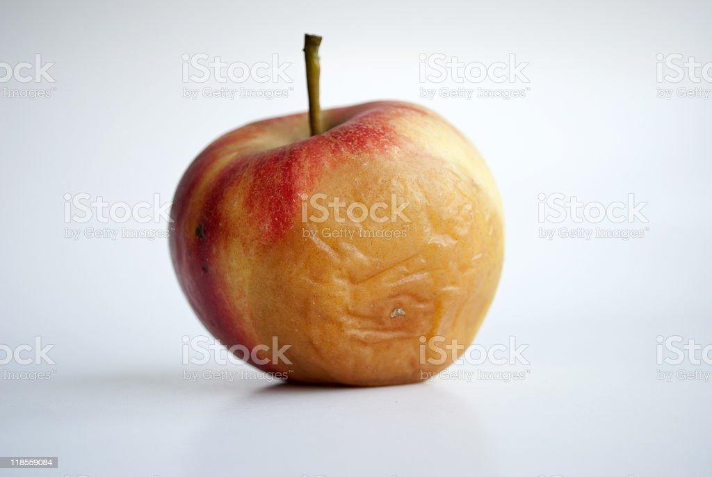 Rotting apple royalty-free stock photo