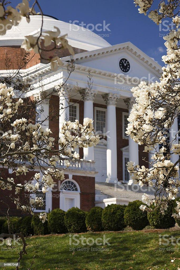 Rotunda at UVA in spring stock photo