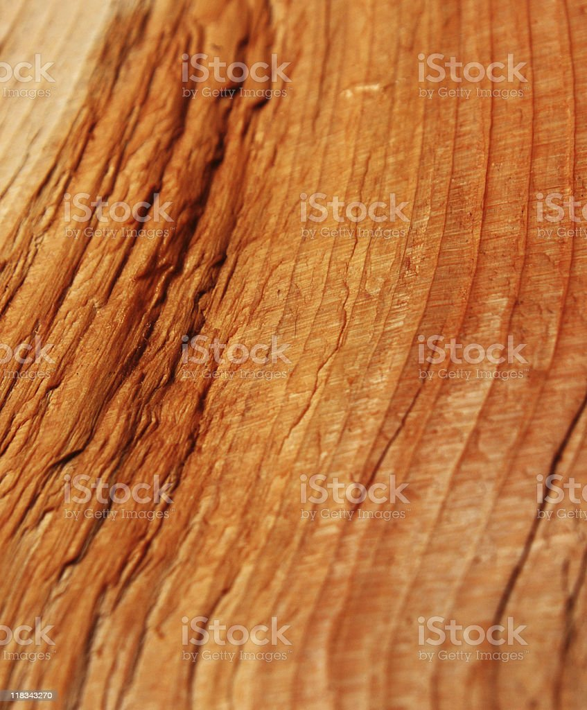 Rough Cedar surface stock photo