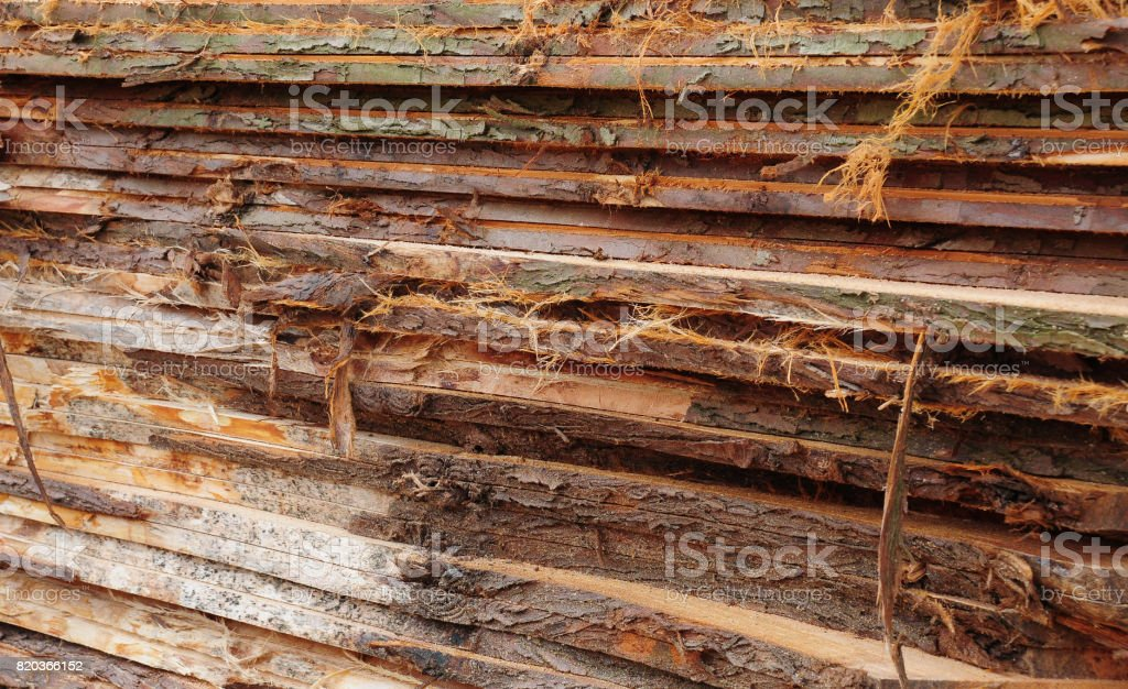 Rough cut timber stack stock photo