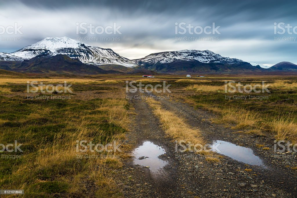 Rough road perspective in yellow field with snow mountain background stock photo