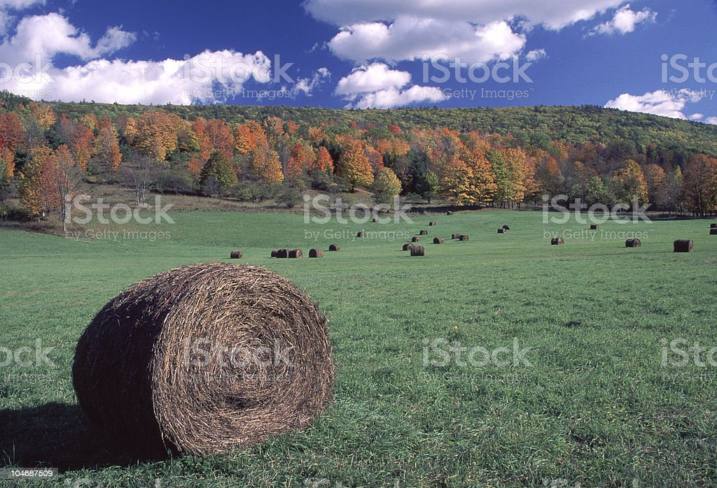 round bale in autumn field royalty-free stock photo
