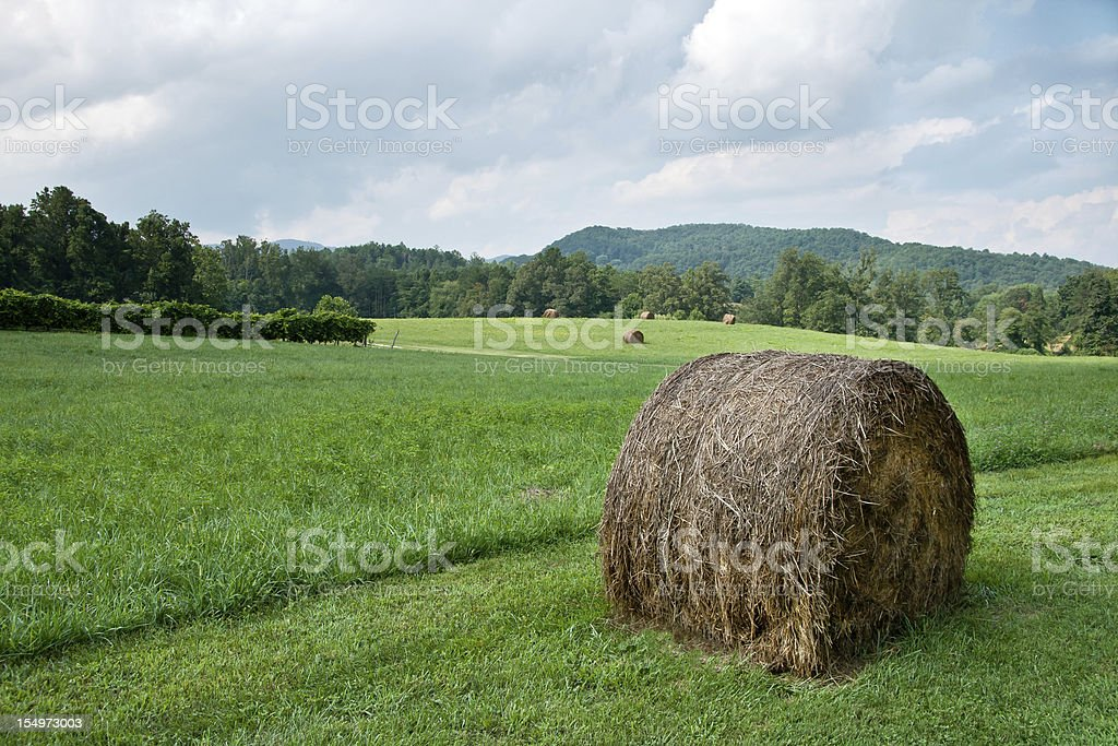 Round Bale of Hay royalty-free stock photo