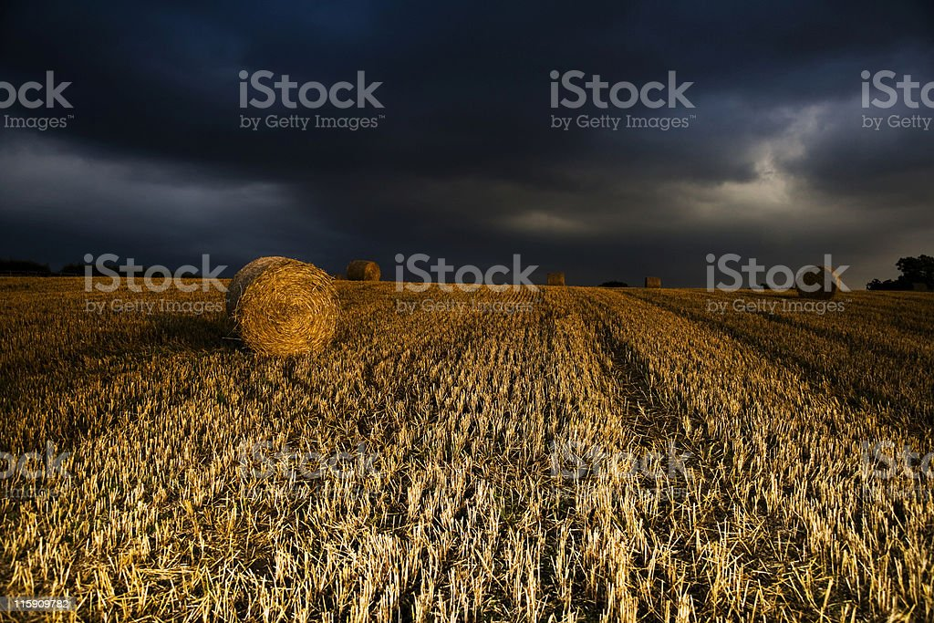 Round bales of hay in field with story background royalty-free stock photo