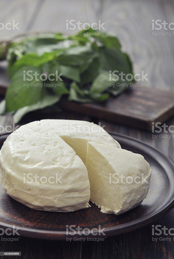 Round cheese stock photo