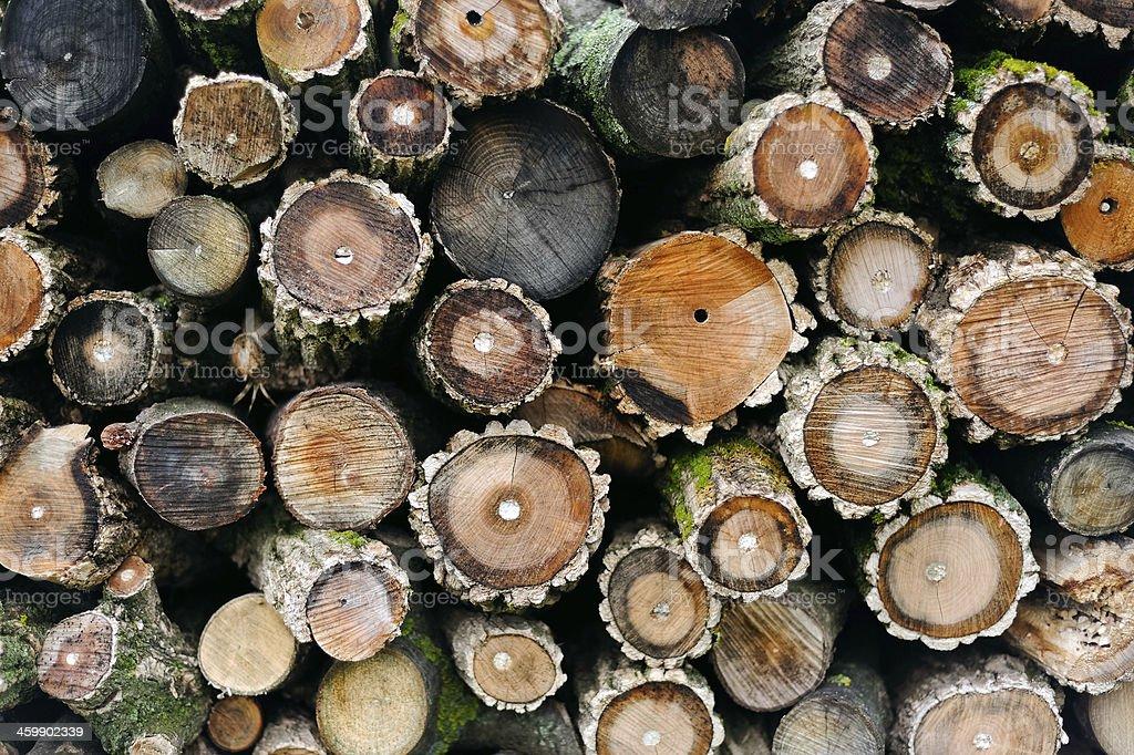 round firewood stock photo