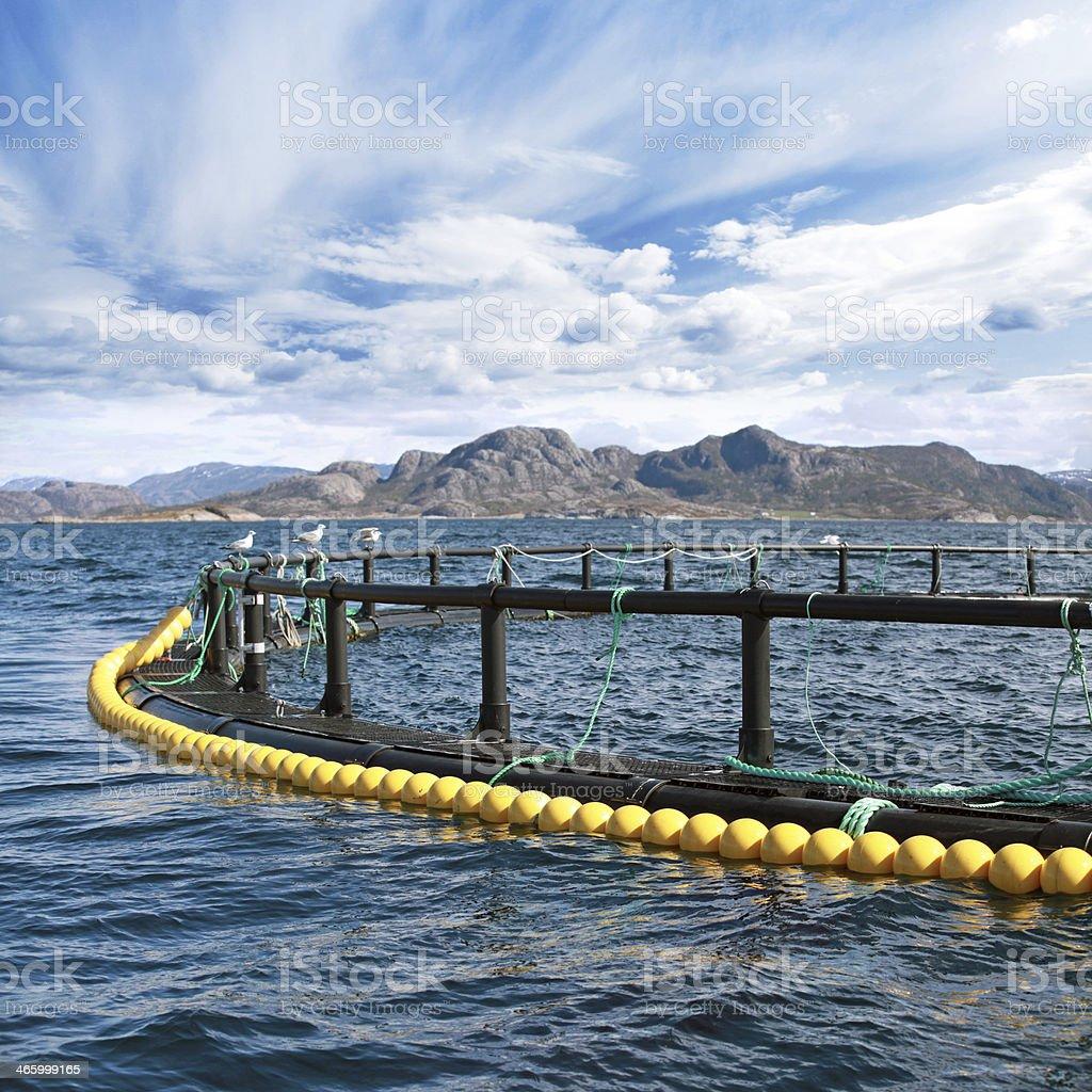 Round fish farm cage in Norwegian Sea stock photo