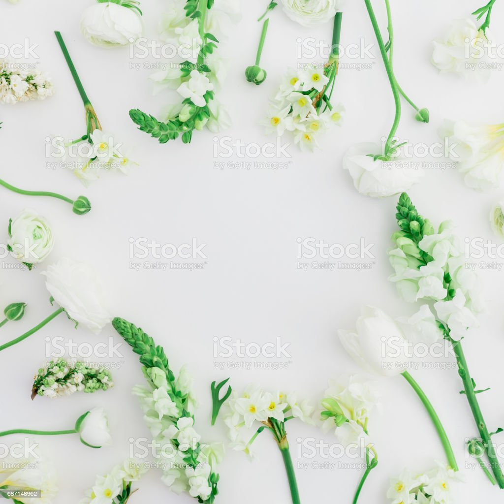 Round frame of spring flowers - ranunculus, snapdragon and tulip on white background. Flat lay, top view. stock photo