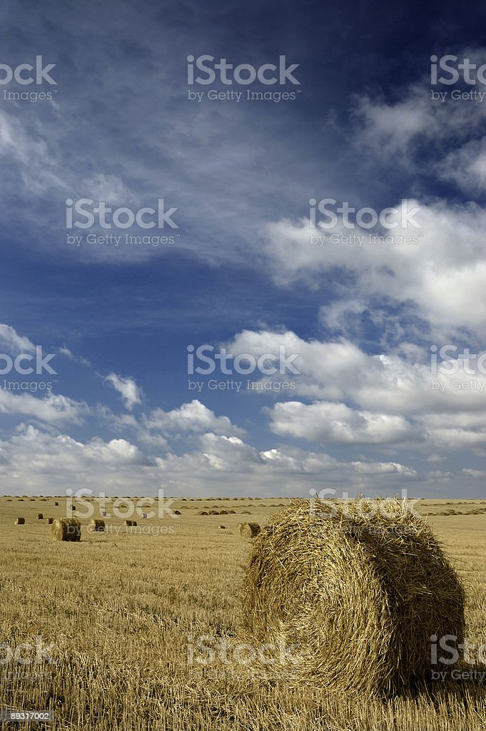 Round hay bales and blue sky royalty-free stock photo