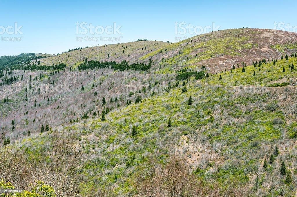 Round Mountain stock photo