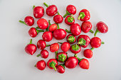 round pepper - red pipper