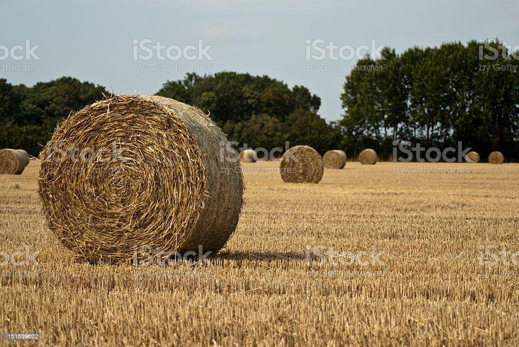 Round straw bales royalty-free stock photo