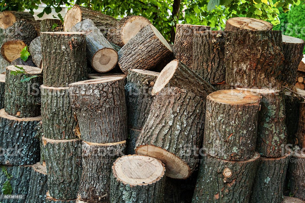 round stumps of wood stacked and ready for chopping stock photo