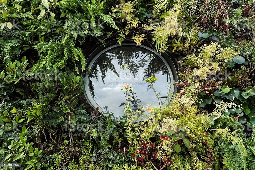 Round window surrounded by vertical garden stock photo