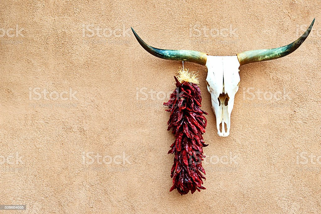 Route 66, Cow Skull and Chili Peppers on Stucco Wall stock photo