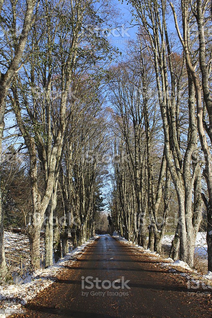 route, road, snow, moutain, voie, chemin, winter royalty-free stock photo