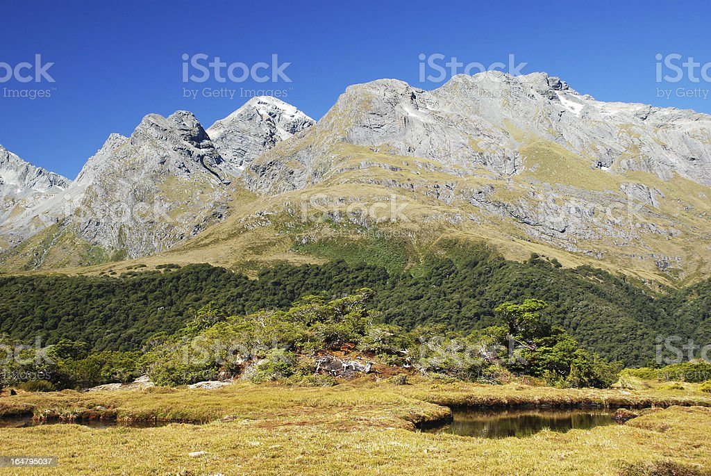 Routeburn Track scenery, New Zealand royalty-free stock photo