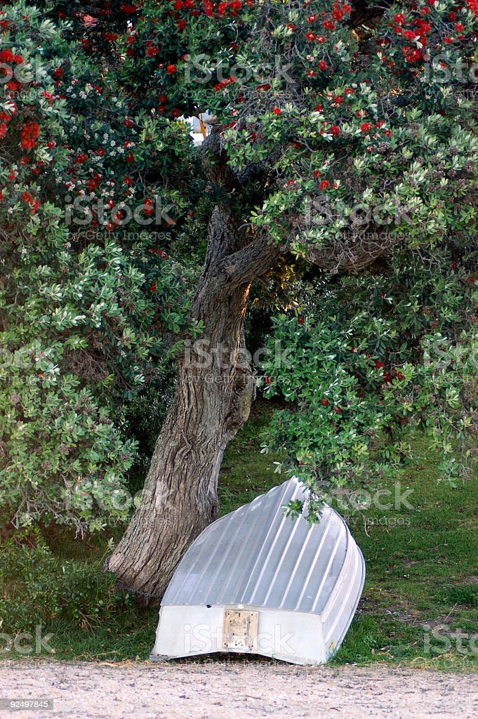 Row Boat Under Tree royalty-free stock photo