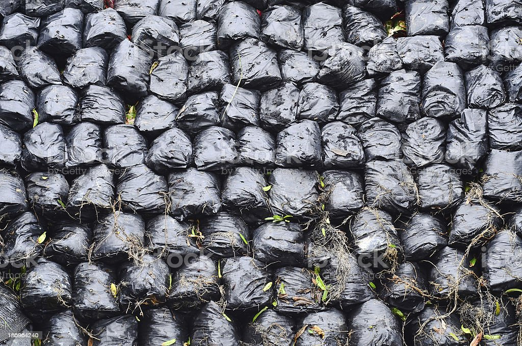Row of ashed bag royalty-free stock photo