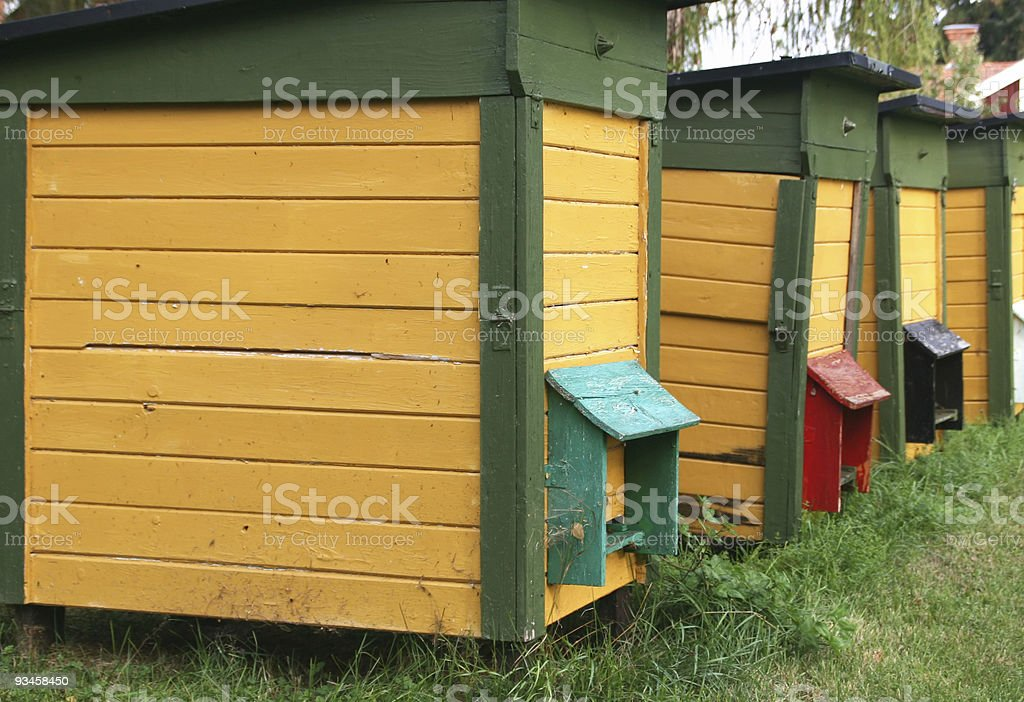 Row of beehives stock photo