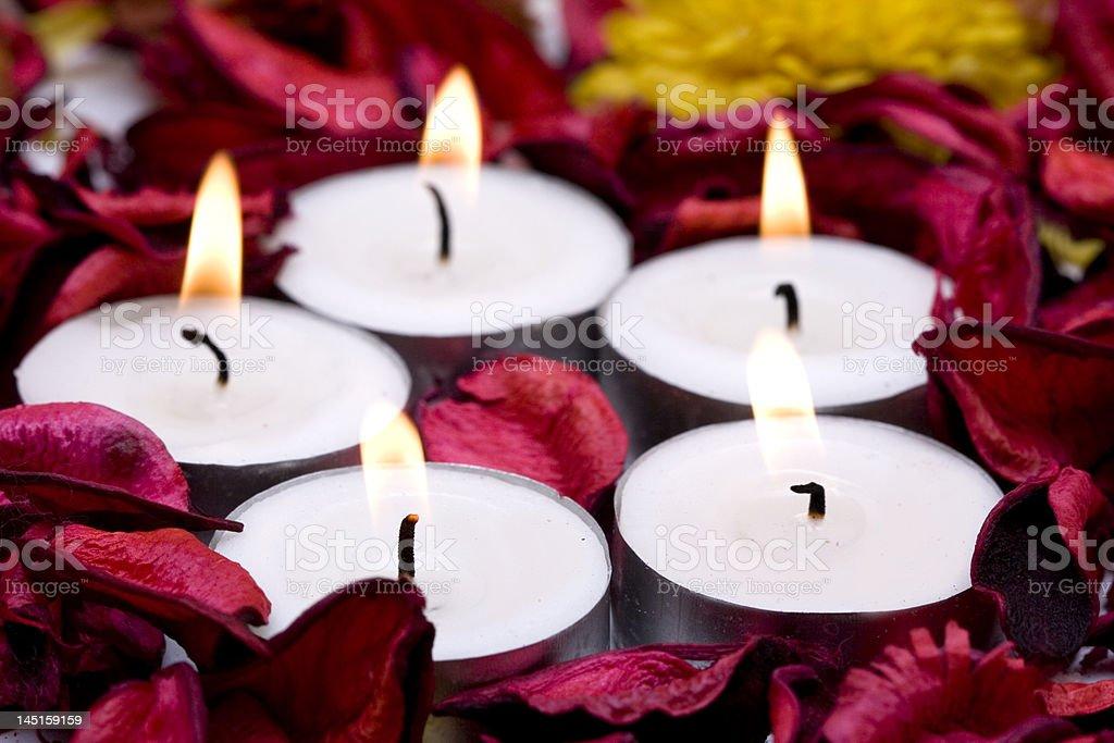 Linha de velas com Pétalas de rosa vermelhas (DOF Raso foto de stock royalty-free