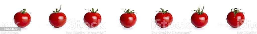 row of cherry tomatos (XXXLarge) stock photo