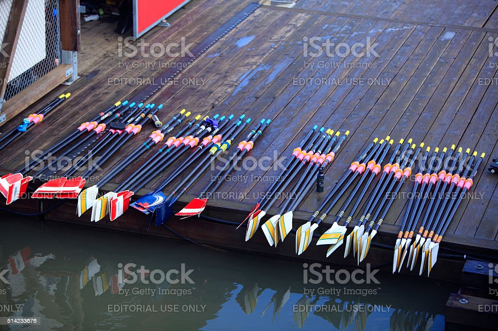 Row Of Colorful Oars stock photo