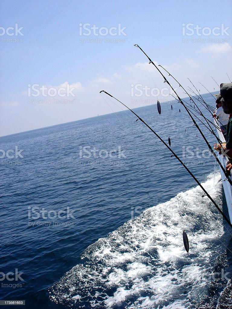 Row of fishing rods on a deep sea fishing boat royalty-free stock photo