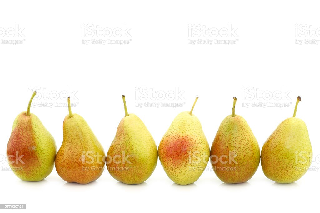 row of fresh 'Forelle' pears stock photo