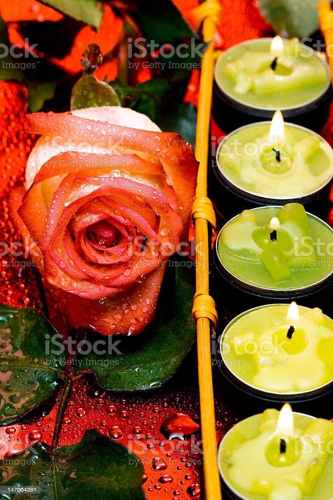 Linha Verde velas com rosas foto de stock royalty-free