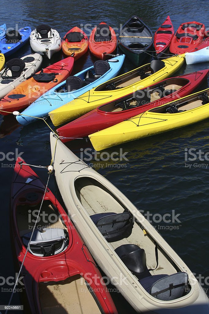 Row of Kayaks in the water royalty-free stock photo
