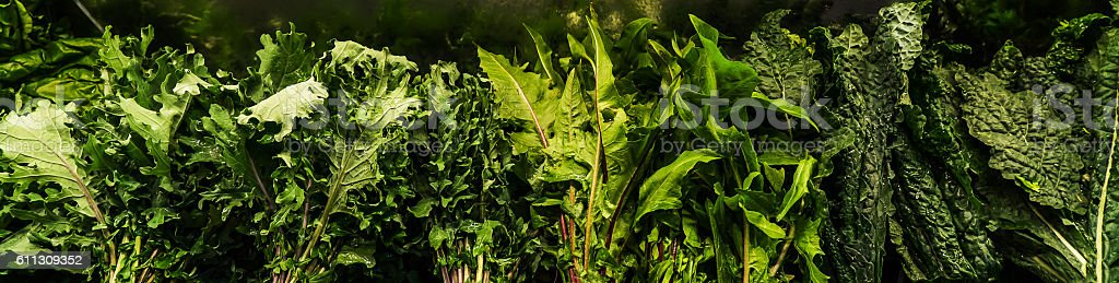 Row of Leafy Greens stock photo