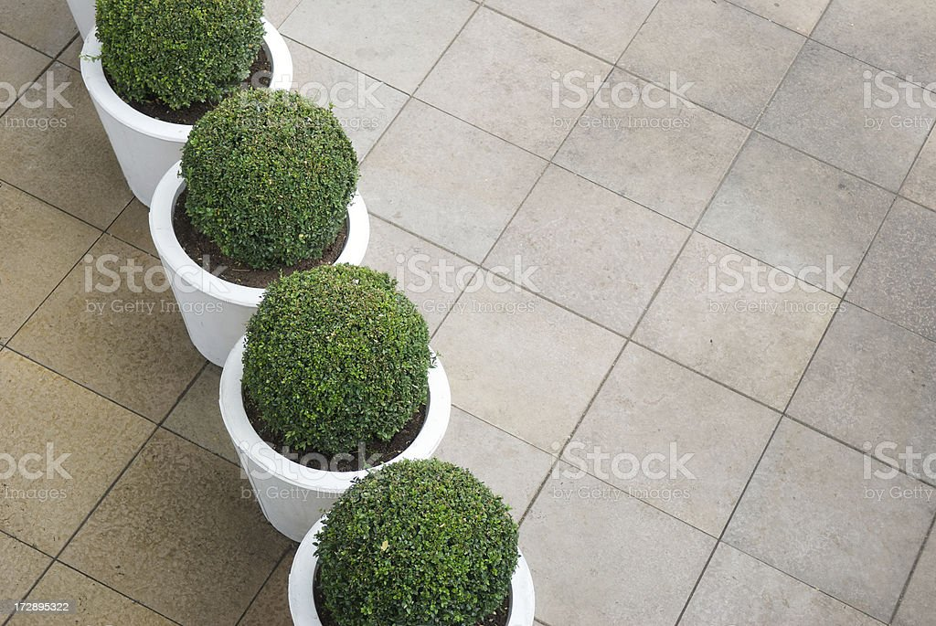 Row of Modern Abstract Hedges royalty-free stock photo