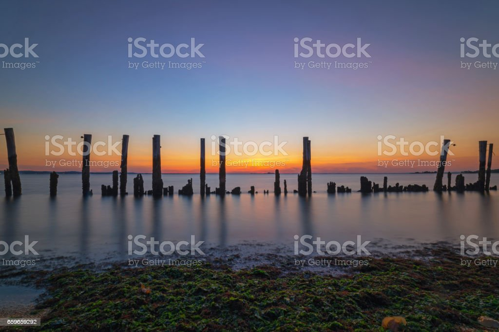 Row of old wood pilings in New Jersey stock photo