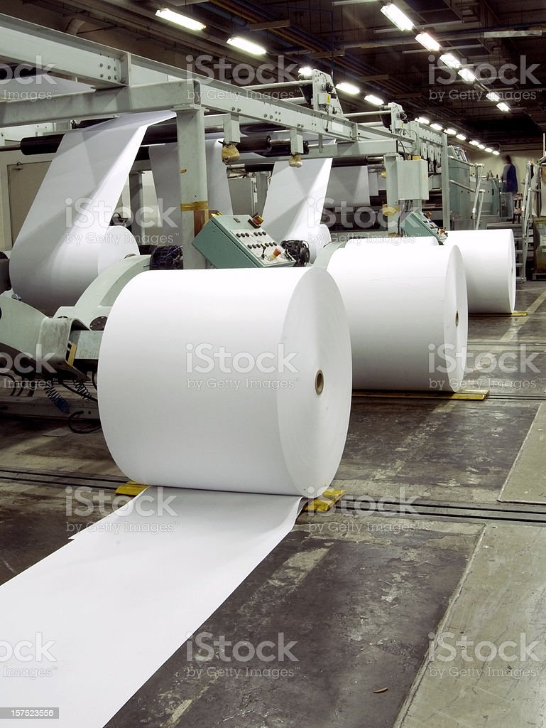 Row of paper rolls for print in a printing factory stock photo