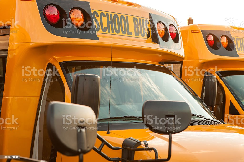Row of parked yellow school buses stock photo