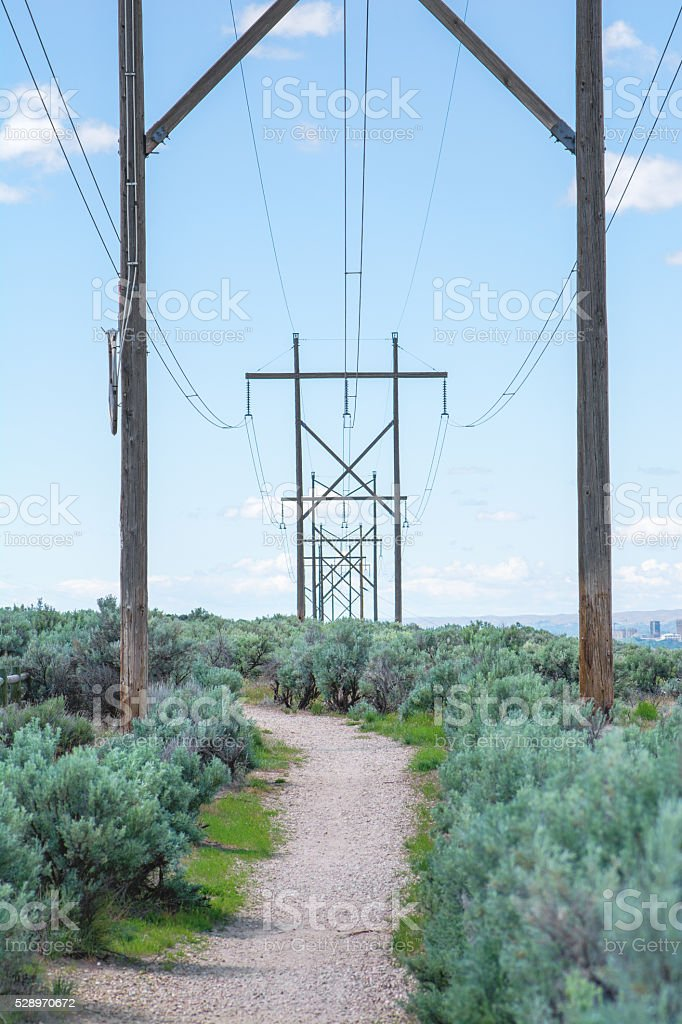 Row of Power Lines stock photo