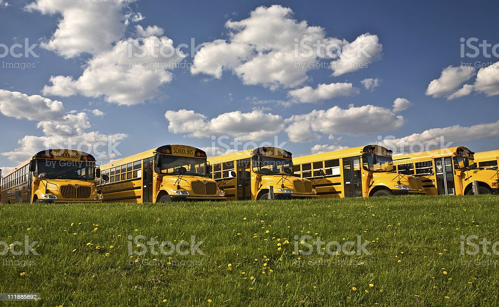Row of School Buses royalty-free stock photo