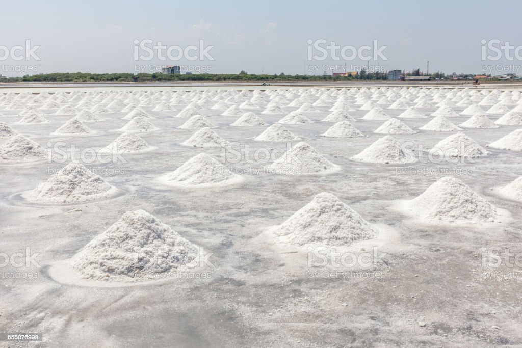 Row of sea salt extraction ready for harvesting with rural scene of Thailand. stock photo