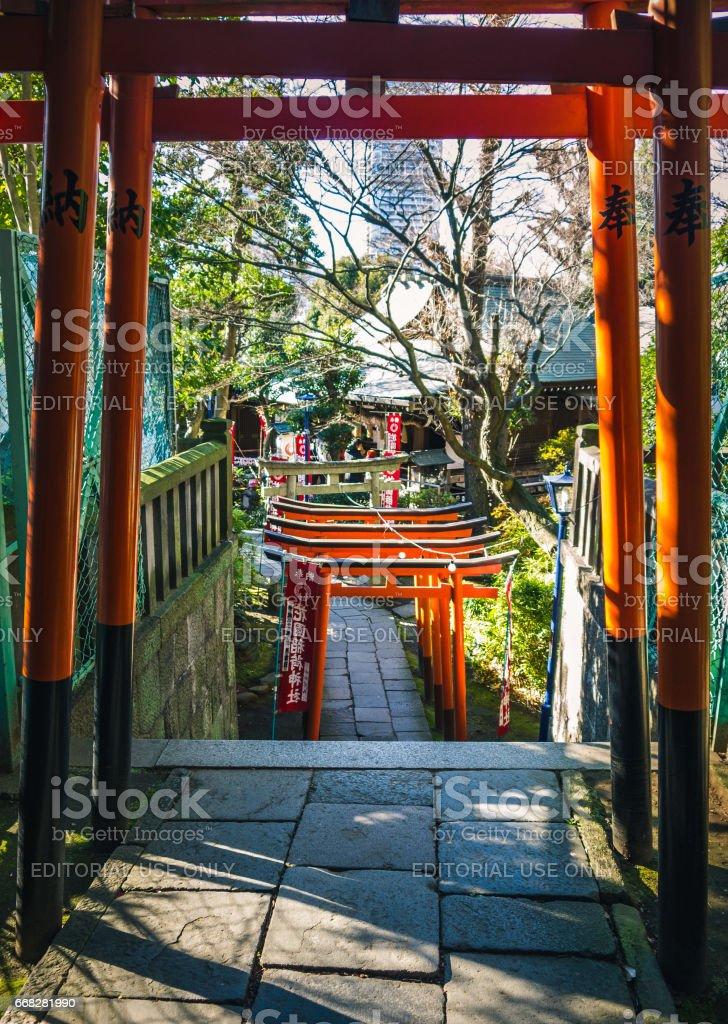 Row of torii gates stock photo
