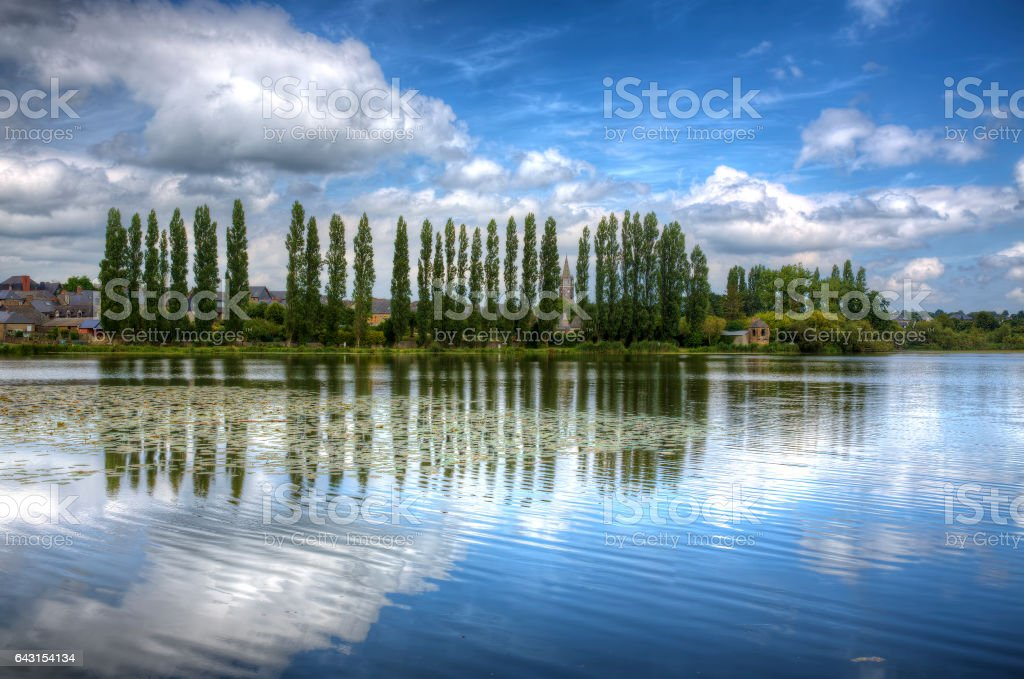 Row of Trees, Combourg, Brittany stock photo