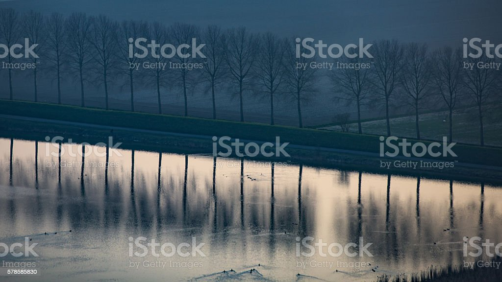 Row of trees on a dike, reflected in water below stock photo