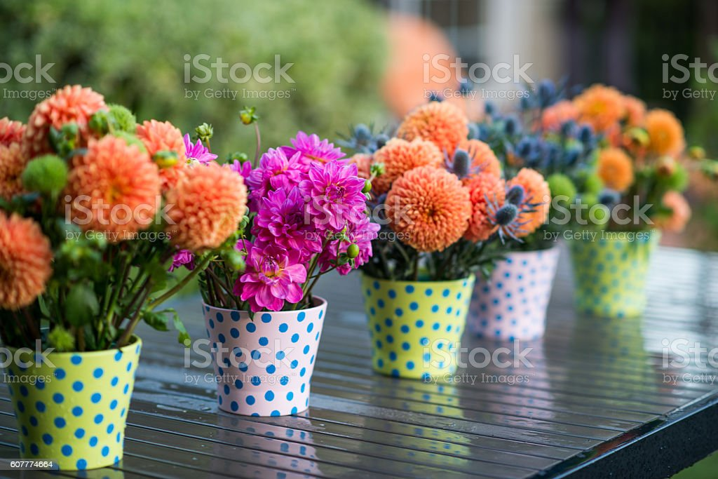 Row of Wet Flower Arrangements in Pots stock photo