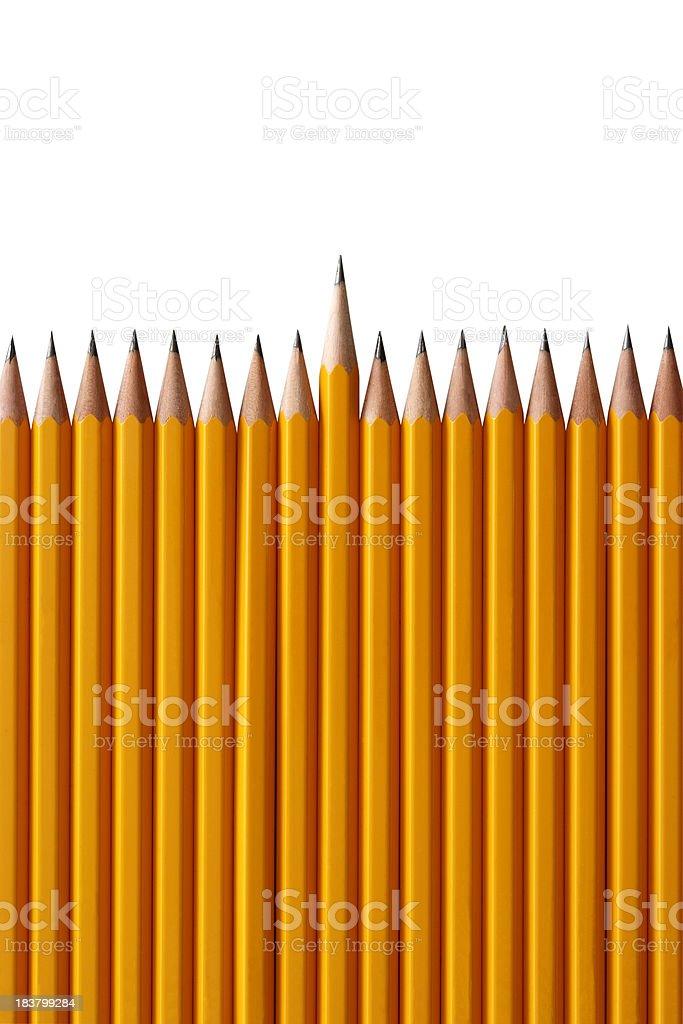 Row of yellow pencils on white background stock photo