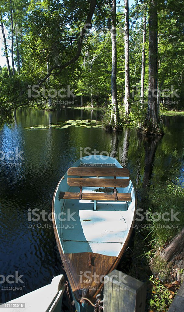 Rowboat in the  Swamp royalty-free stock photo