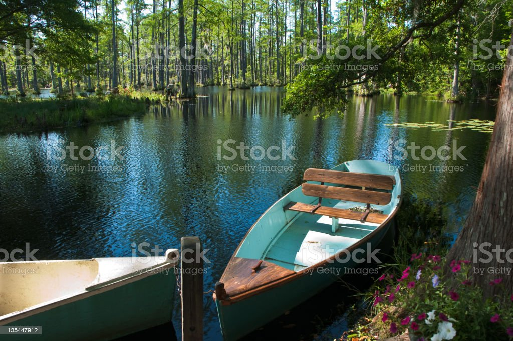 Rowboats in the Cyprus Swamp royalty-free stock photo