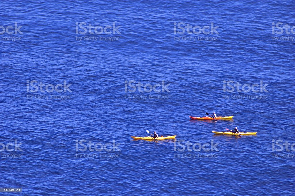 Rowers on a Calm Sea royalty-free stock photo