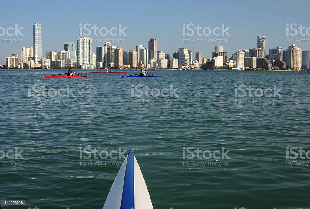 Rowers with Miami skyline royalty-free stock photo