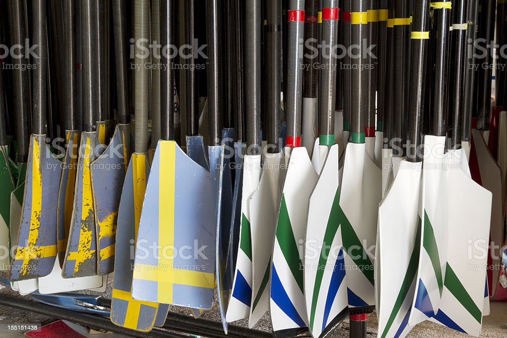 Rowing oars royalty-free stock photo