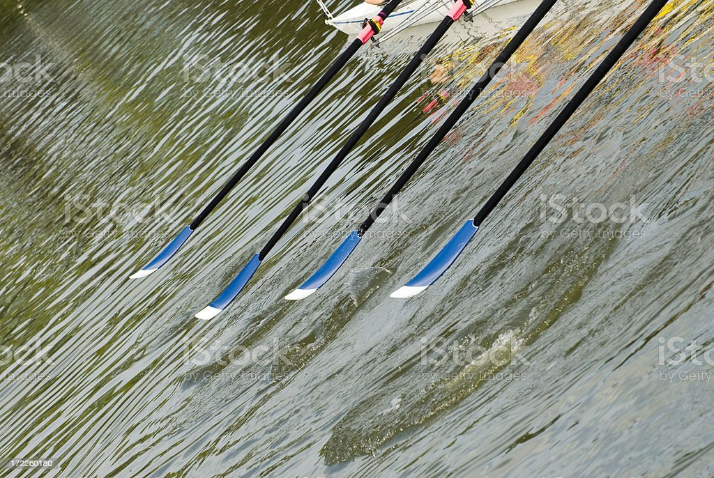 Rowing Series - Abstract Oars royalty-free stock photo